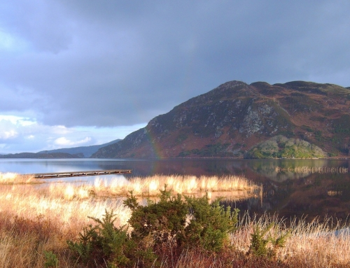 Caragh Lake in Autumn