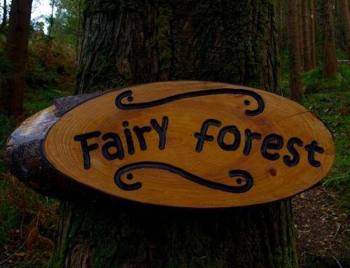 Glenbeigh Fairy Walk