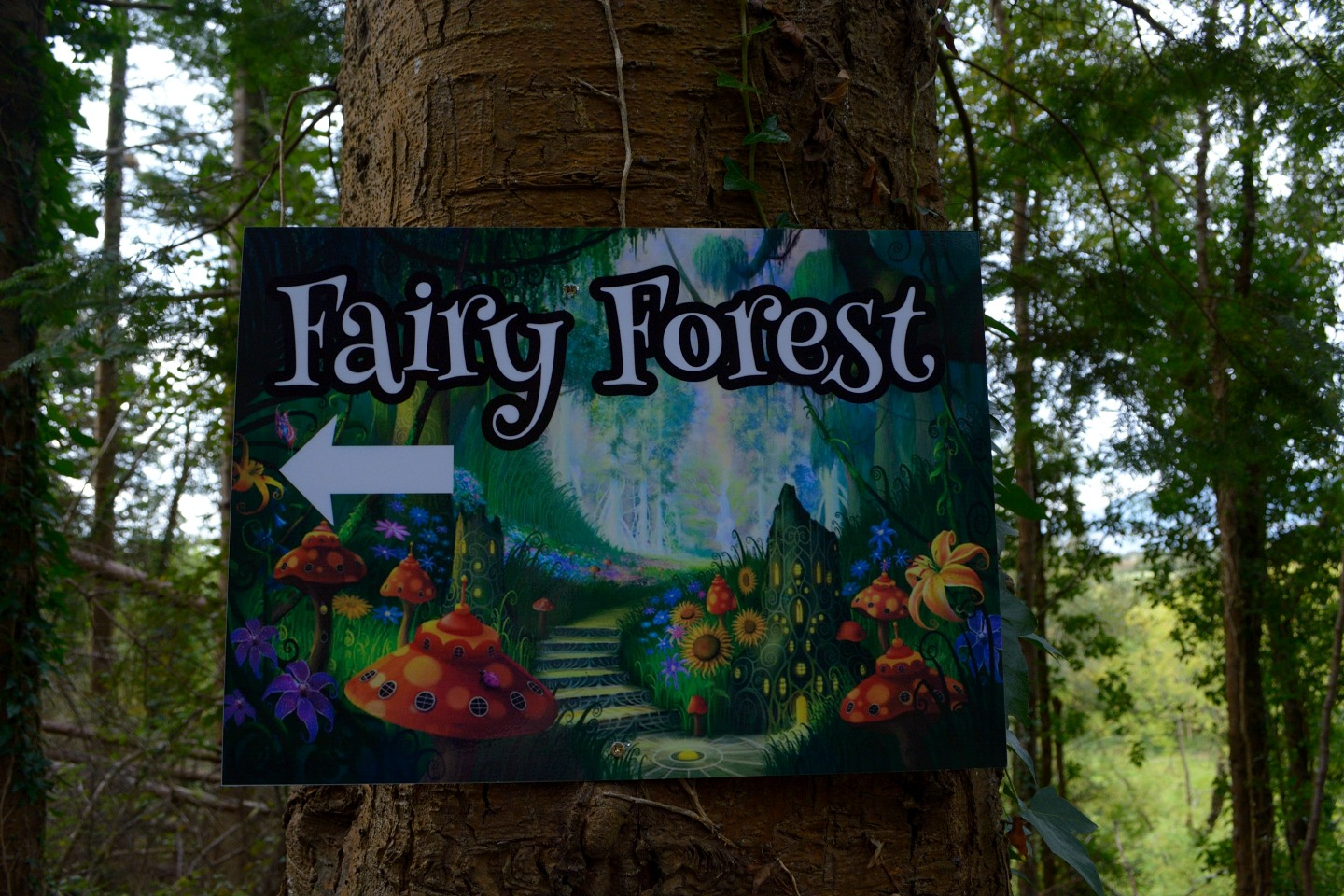 Development of Fairy Walk