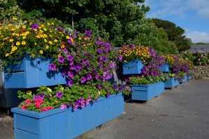 New flower box area around the Bottle bank
